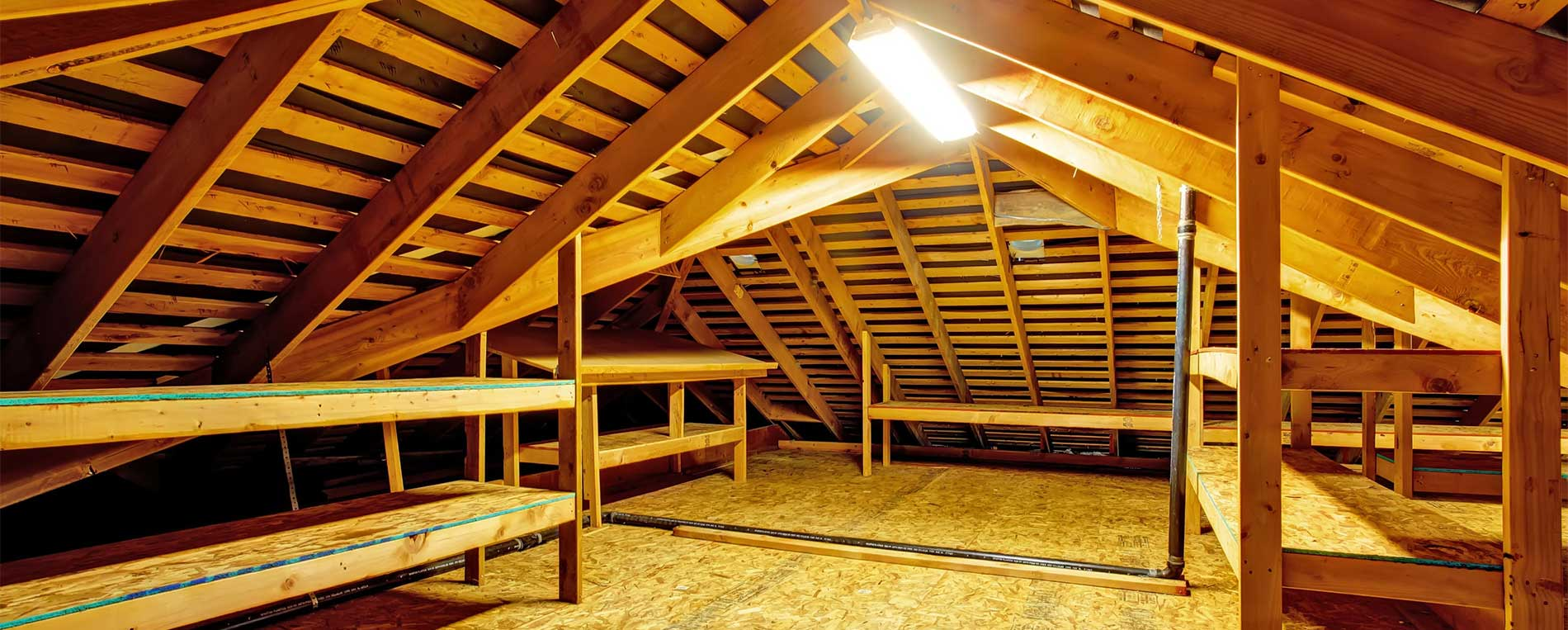 Attic Rodent Proofing & Anti Rodent Insulation   Alameda, CA